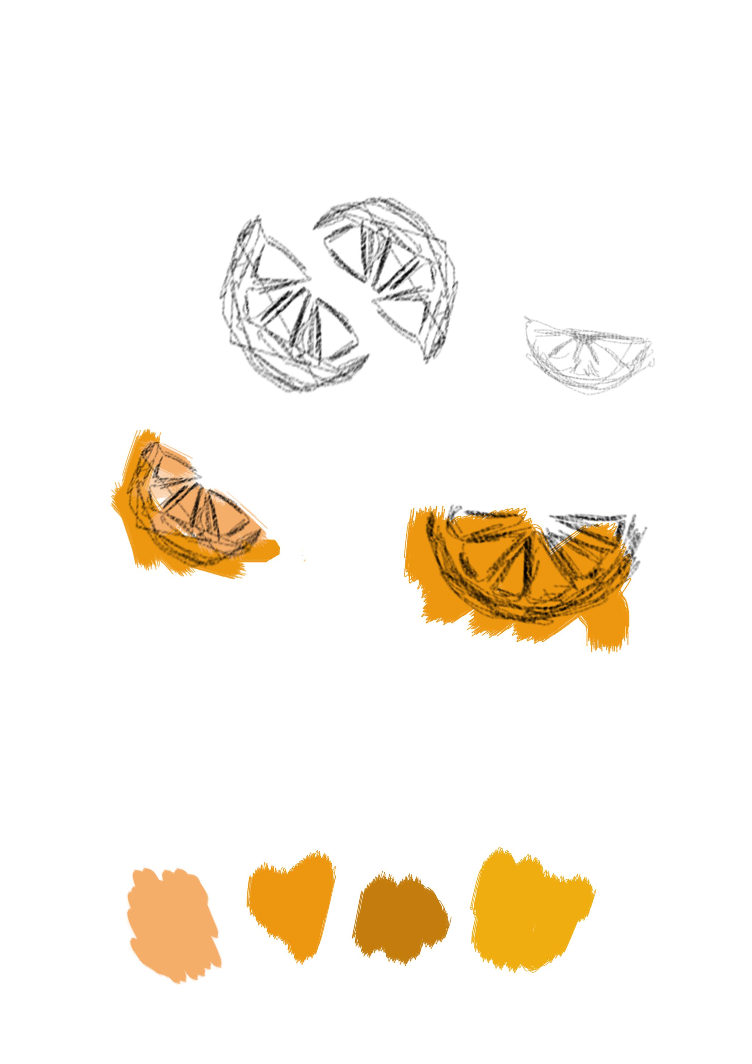 Provini colori Orange Consulting